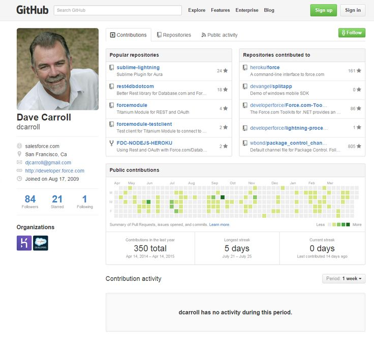 Developer-focused profile. The public contributions section is a cool view of the member's activity.