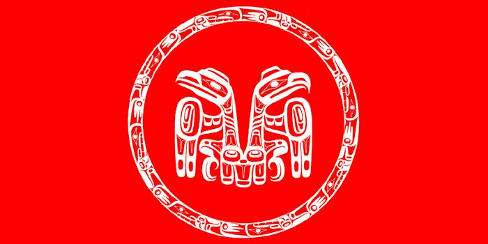 the haida people of the northwest Northwest coast totem pole myths the term totem pole refers to the tall cedar poles with multiple figures carved by native people of the northern northwest coast tall multiple-figure poles were first made only by the northern northwest coast haida.