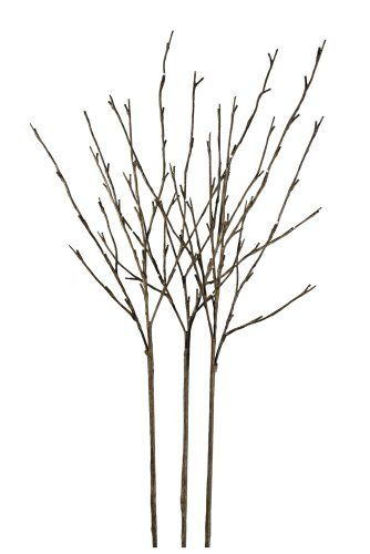 Floral Lights Lighted Willow Branch (set of 3 Branches) with 96 bulbs, 40 inches, http://www.amazon.com/dp/B005D5MV86/ref=cm_sw_r_pi_awdl_JhqNsb13ES08D