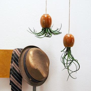 Fab.com   Hanging Houseplants