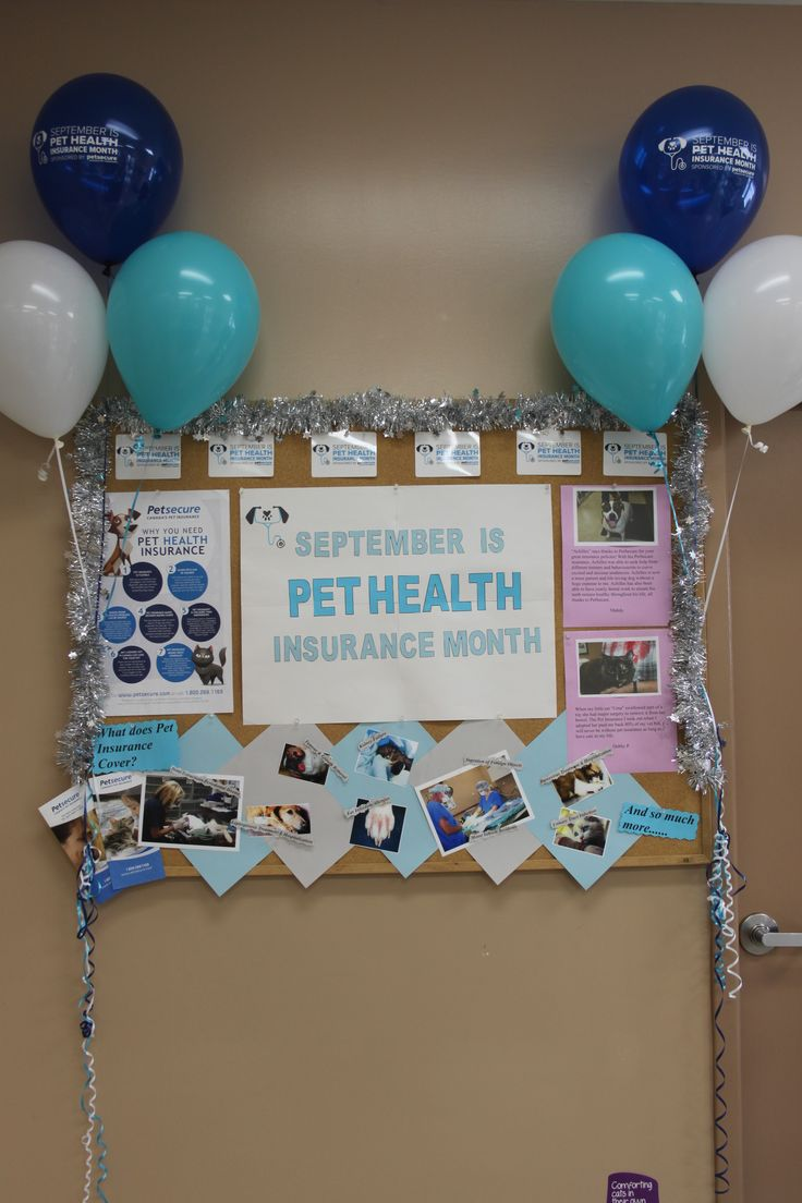 Clinic decorated for Pet Health Insurance month