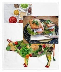 Los Mejores Alimentos Ricos en Proteina Vegetal-Top 2016