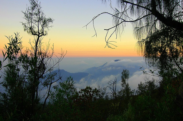 Mount Lawu, Java, Indonesia