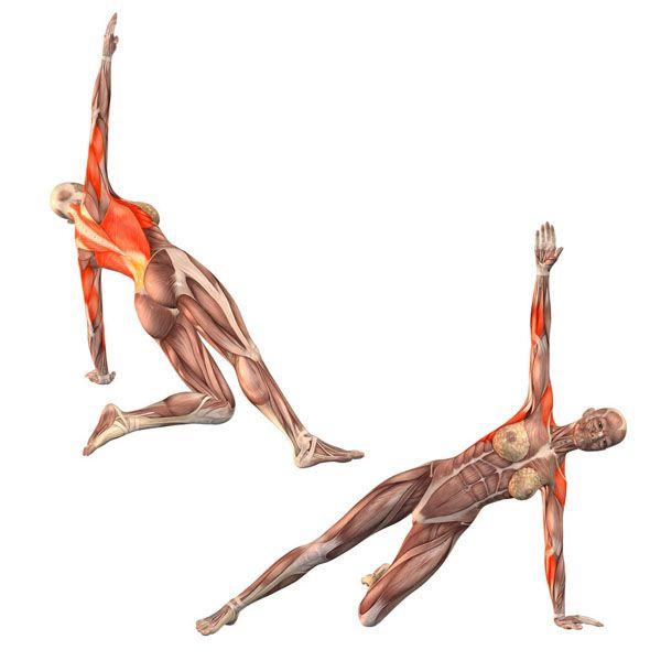 Half side plank pose on left hand - Vasisthasana half left - Yoga Poses…