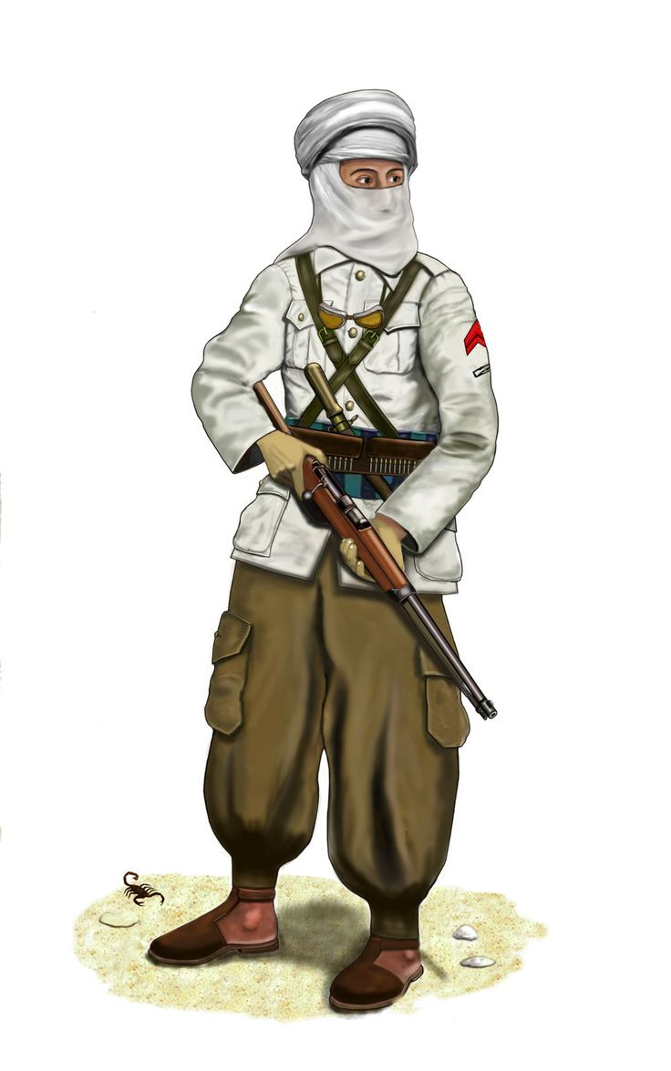 WW2 - 1940 Egypt - Libyan Meharist by AndreaSilva60 on DeviantArt