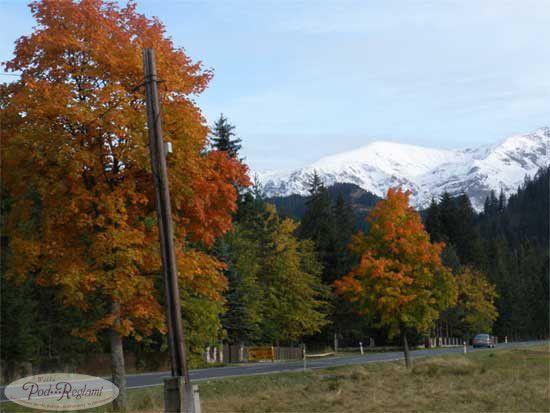 Tatry jesienią, drzewa