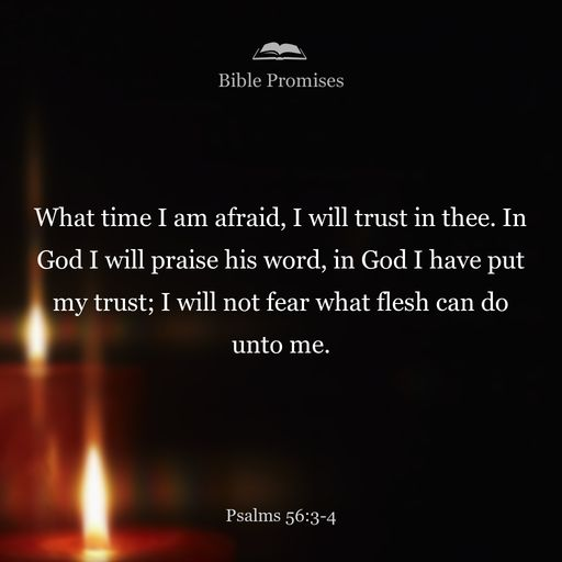 When I am afraid, I will trust in you. In God, whose word I praise, in God I trust; I will not be afraid. What can mortal man do to me?