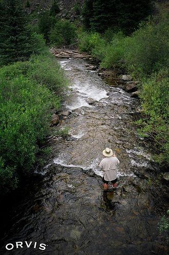 Fly Fishing - Mill Creek