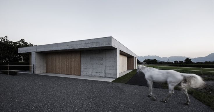 Gallery of Griss Equine Veterinary Practice / marte.marte architects - 18