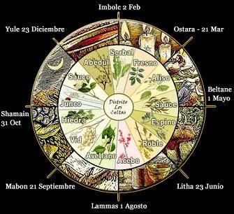 El candil de la esperanza tienda esoterica: El calendario lunar celta