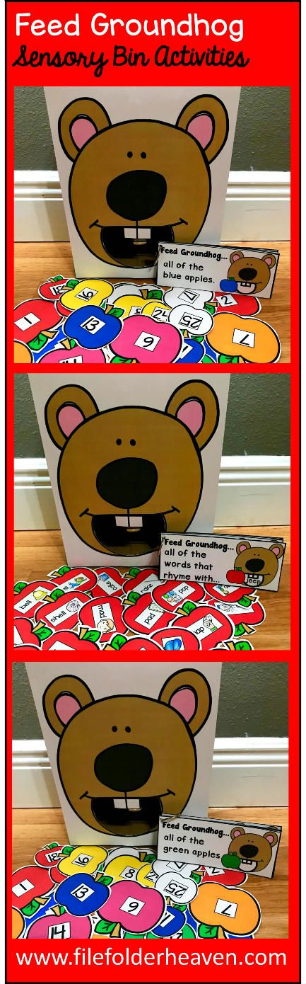 """These Groundhog Sensory Bin Activities: """"Feed Groundhog"""" are a GREAT addition to your Groundhog or Groundhog Day themed sensory bins!  There are so many ways to use this Feed Groundhog Set. I have left it very open ended so that you can target the skills you need to target in a small group setting.  I have also included instruction cards for each set so that you can set the activity up as an independent center, and/or sensory bin activity."""