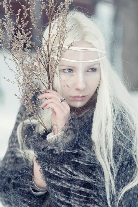 Nordic winter-wonderland