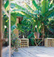 Opter pour une végétation étendue - Marie Claire Maison