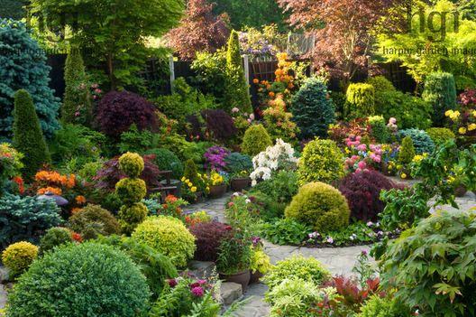 Harpur garden images ltd tmnewt113 june ngs path for Zen garden trees