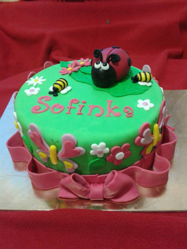 1st Birthday with Ladybird and Butterflies
