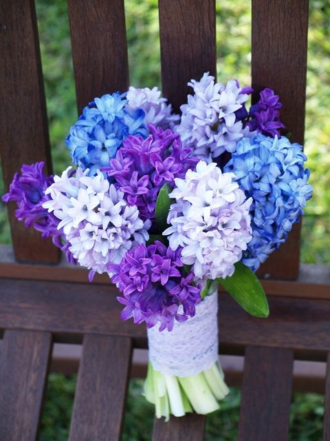 A variety of blue hyacinths make a statement bouquet for a blue themed spring wedding. #rockmyspringwedding @Derek Smith My Wedding