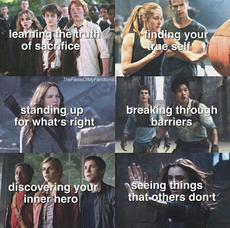 Harry Potter | Divergent | The Hunger Games | The Maze Runner | Percy Jackson | TMI | Fandoms