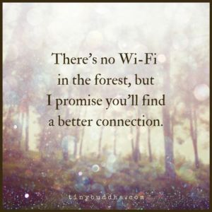 There's No WiFi in the Forest, but You'll Get a Better Connection