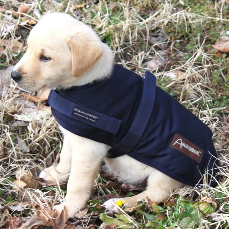 Aussie Naturals Wool Dog Coat