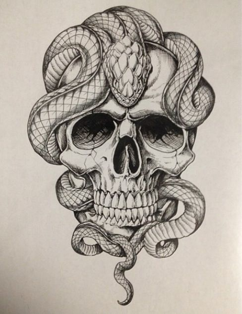 Skull with snakes