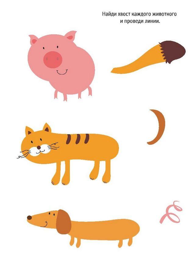 """Скачайте бесплатное развивающее задание """"Чей хвост?"""" и попросите ребенка соединить линией животное и его хвост."""