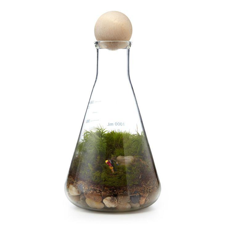 WE HAVE CHEMISTRY TERRARIUM   terrarium kit, garden, plants, couples   UncommonGoods