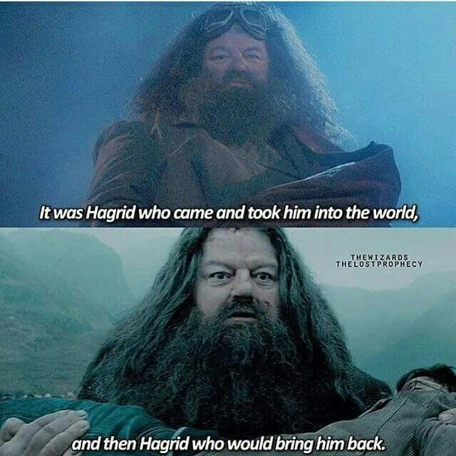 Hagrids face broke my heart the first time I watched Harry Potter and the deathly hallows part 2...