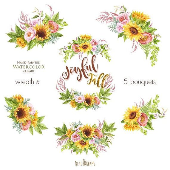 Watercolor Sunflower Peonies Roses Fall Clipart Autumn
