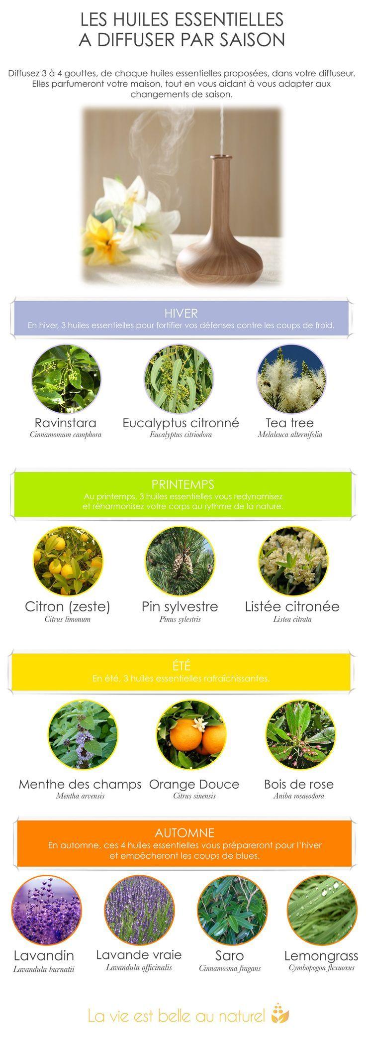 Les huiles essentielles à diffuser par saison                                                                                                                                                                                 Plus