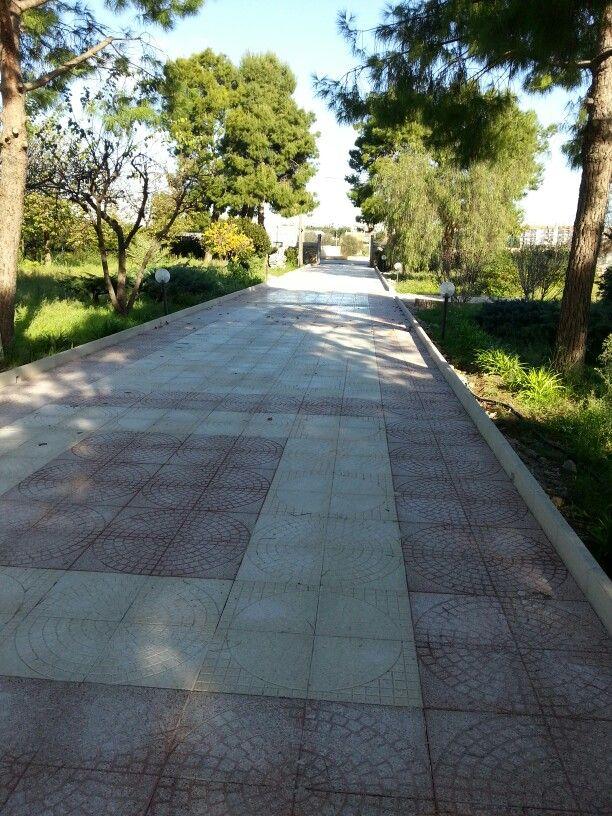 Viale in mattoni di cemento decorati