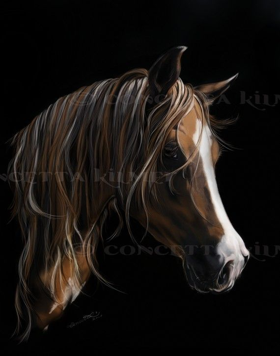The Mare  Horse Art  Open Edition Art Print by concettasdesigns, $15.00