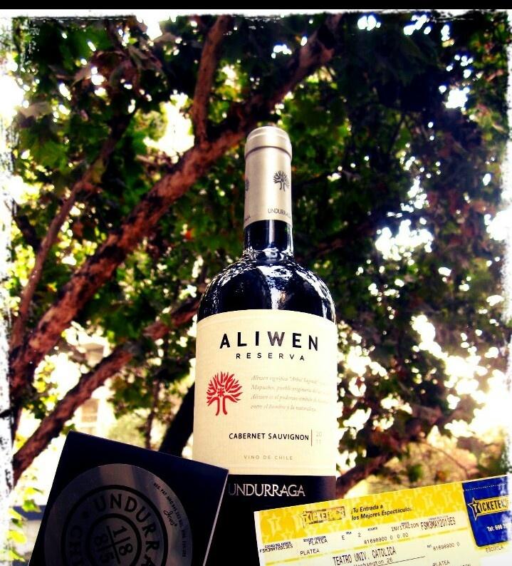 Vino chileno de reserva cabernet sauvignon. Undurraga