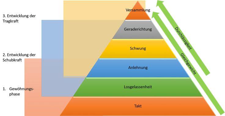 Skala der Ausbildung - Ausbildungsskala - Ausbildungssystem des Pferdes - Eine Einführung