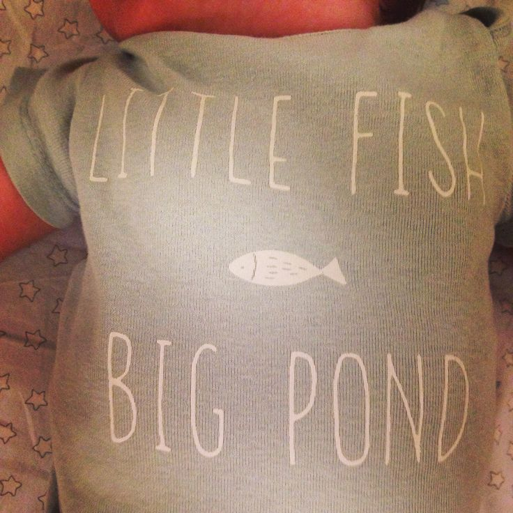Little fish, big pond