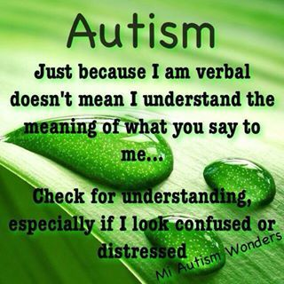 Just because I am verbal doesn't mean I understand the meaning of what you say to me.....check for understanding especially if I look confused or distressed