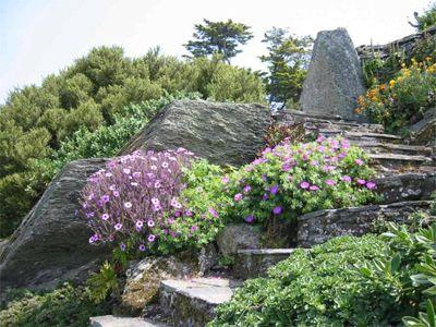 Gardens near Fowey