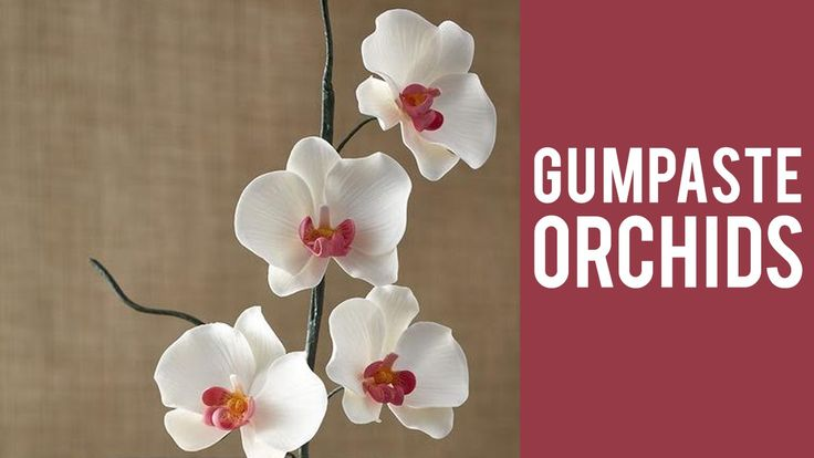 how to make fondant orchids step by step