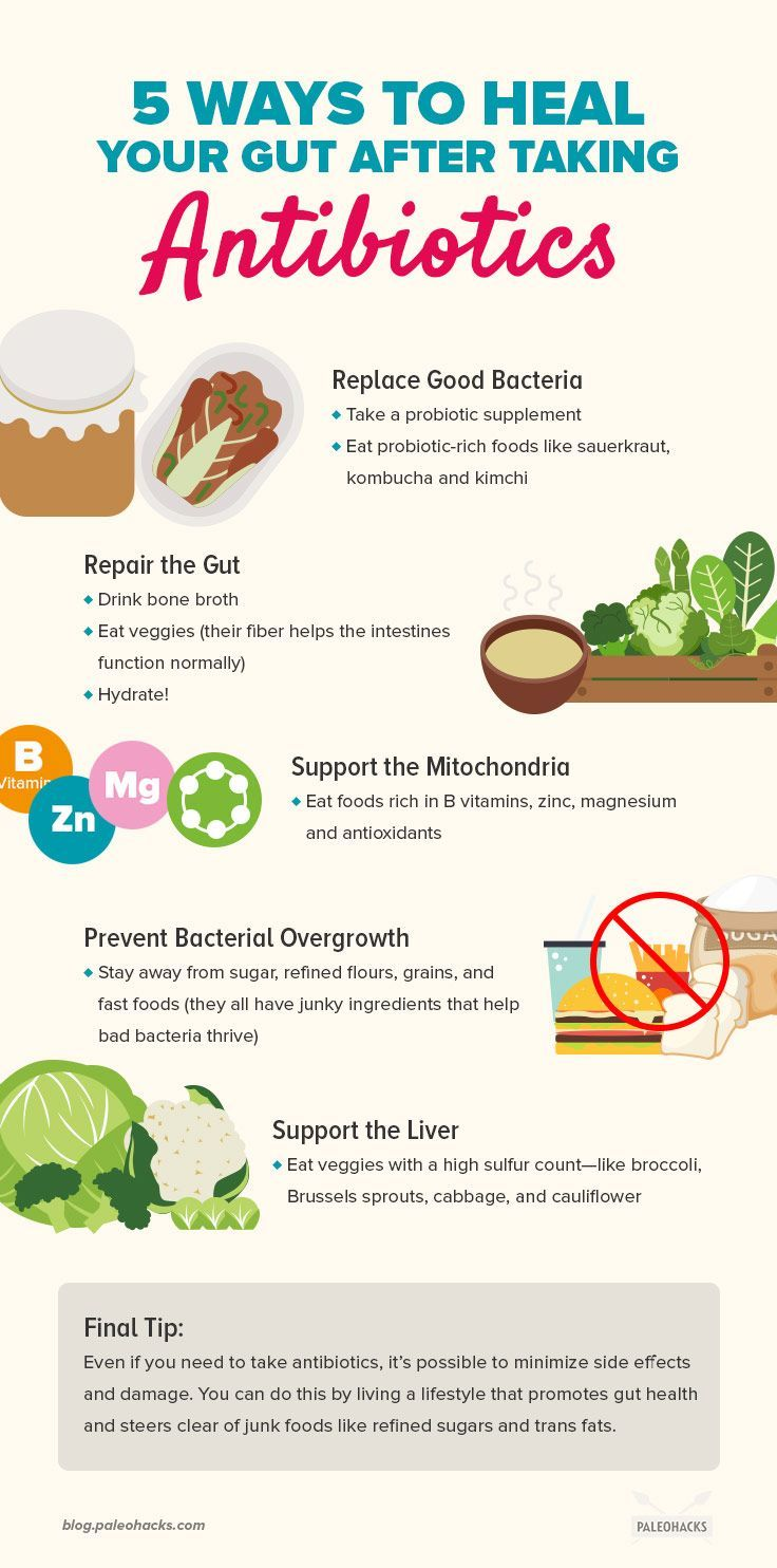 Gut Wrecked? 5 Ways to Heal Your Gut After Taking ...