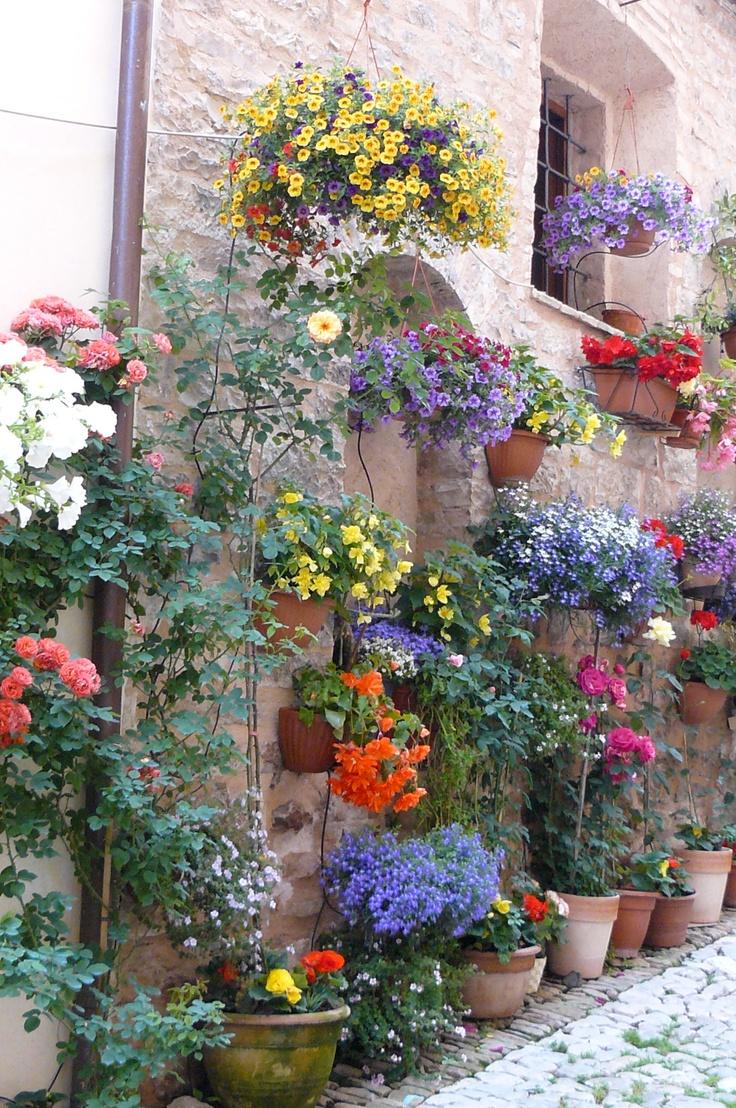 Primavera # Barilla en Italia hermoso jardín en Spello, province of perugia , Umbria region Italy