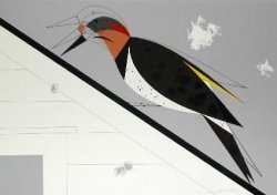 Yellow-Shafted Flicker by Charley Harper