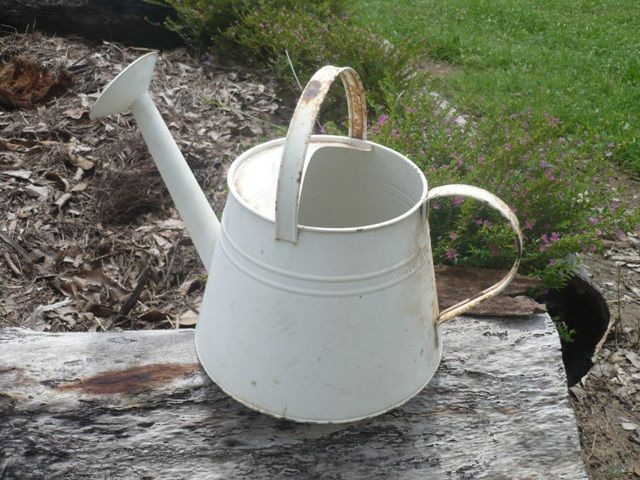 Watering can - can be used for flower arrangements etc