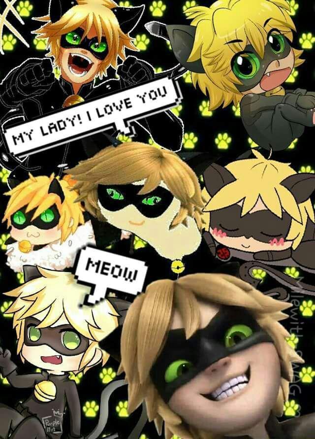 Fondos De Pantalla LadyBug y Chat Noir - ★Chat Noir- Adrien★ - Página 2 - Wattpad