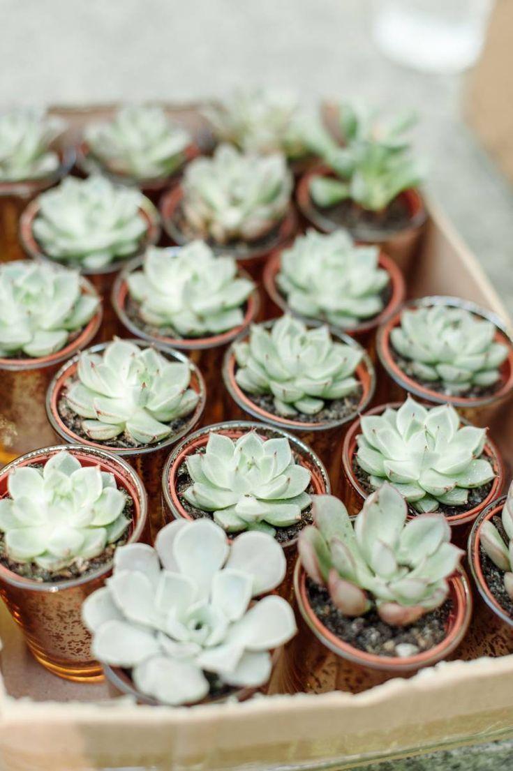 Modern Garden Dallas Wedding by Keestone Events | Succulent