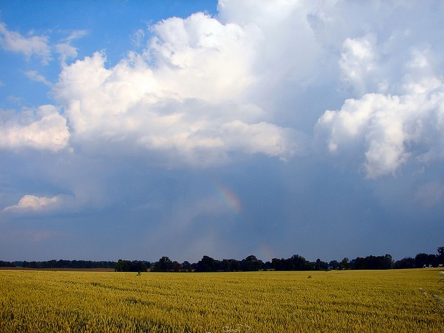 Indiana Landscape by cindy47452, via Flickr - this photo would make a great painting