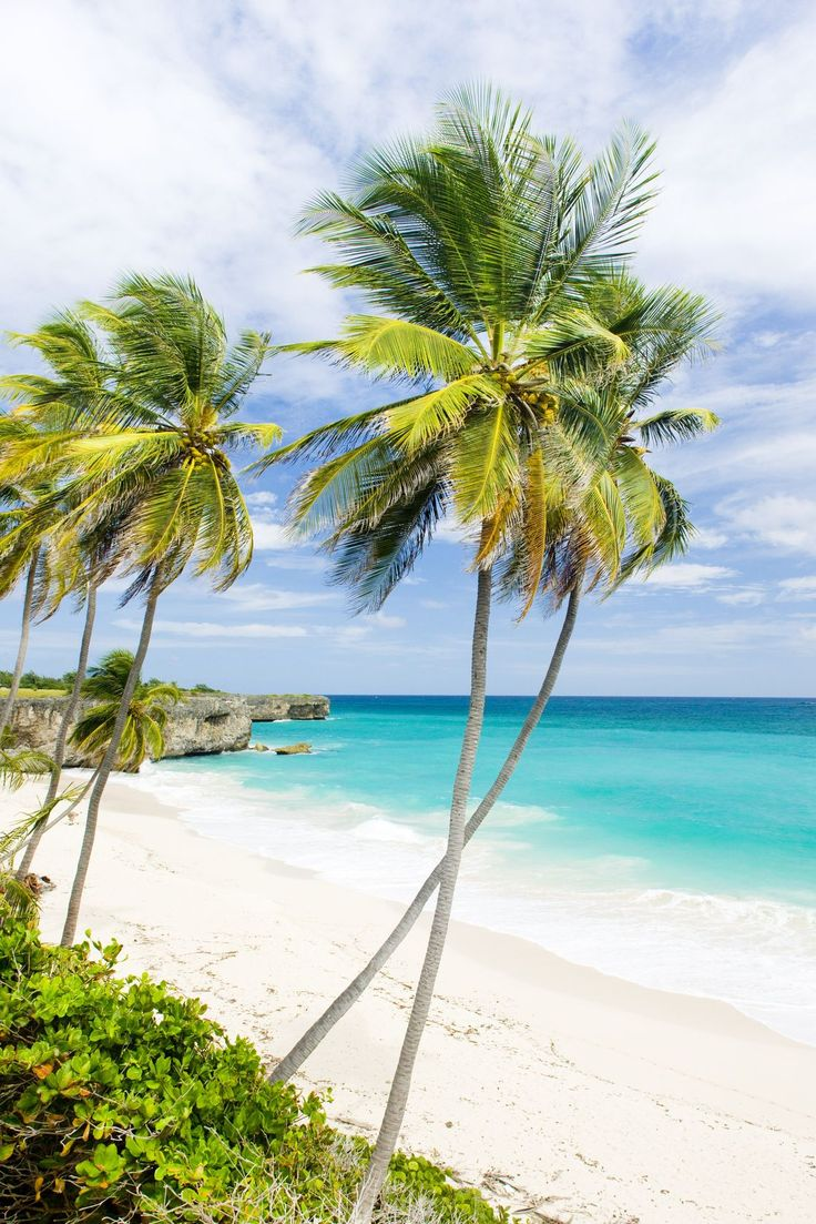 Turquoise waters and swaying palms at the very scenic Bottom Bay on the south-east coast of Barbados.