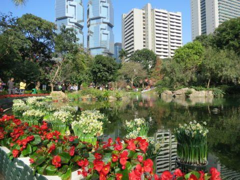 パワスポ 香港公園