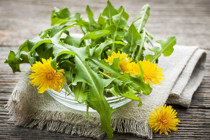 Dandelions greens and flowers