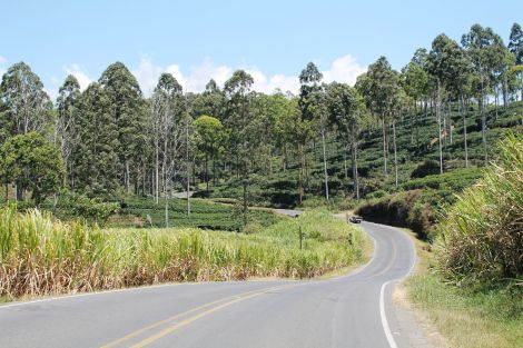 Curvy roadway (from post: Costa Rica Vehicle Rentals - Should You Rent A Car For Your Costa Rica Trip?)