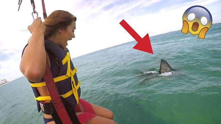 Jake Paul - Shark Attack Prank (Wife Freakout). It's her worst fear.