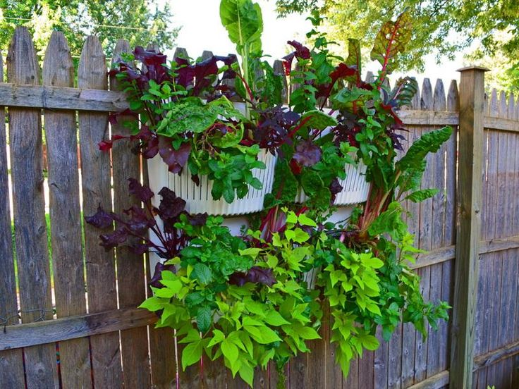 vertical gardening ideas 39